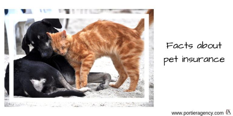 Facts about pet insurance